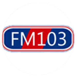 PP FM103